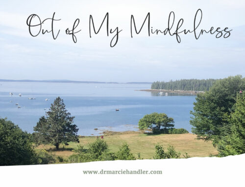 Out of My Mindfulness